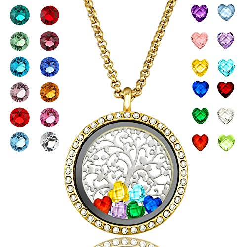 YOUFENG Floating Living Memory Locket Pendant Necklace Family Tree of Life Birthstone Necklaces (Gold CZ ()