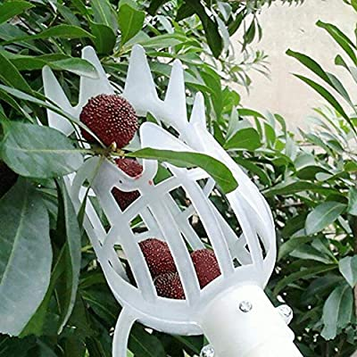 leveraYo Plastic Fruit Picker Pole Greenhouse Effect Catcher Fruit Picking Gardening Tool Farm Garden Hardware Picking Device for Small Fruits