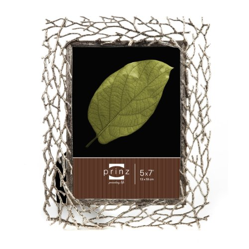 silver 5x7 picture frame - 9