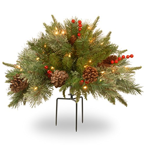 - National Tree 18 Inch Feel Real Colonial Urn Filler with Cones, Red Berries, Tripod Stake and 35 Warm White Battery Operated LED Lights with Timer (PEC1-300-18U-B)