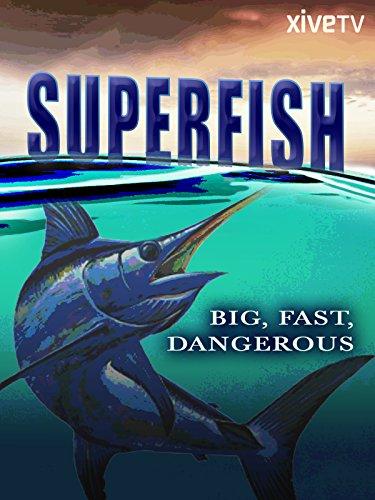 Superfish: Big, Fast, - 2 Predators