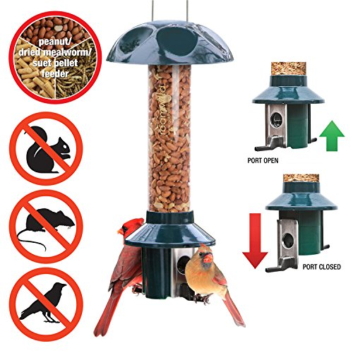 Red Peanut Feeder - Roamwild PestOff Squirrel Proof Bird Feeder for Peanuts/Dried Mealworms/Wild Bird Nuggets