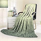 Nalahomeqq Microfiber All Season Blanket/Flannel Fleece Blanket/Luxury Blanket/Heavy Warm Blanket-Wrinkle and Fade Resistant Hypoallergenic Fleece Blanket-65 x 90''(Drops of on the inclined window)