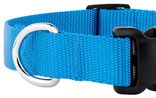 Country Brook Petz 25+ Classic Solid Colors - Deluxe Nylon Dog Collar - Quick Release Buckle, Strong Hardware - Made in The U.S.A. (Extra Large, 1 Inch Wide, Ice Blue)