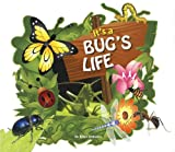 It's a Bug's Life, Brian Johnson, 1622670035