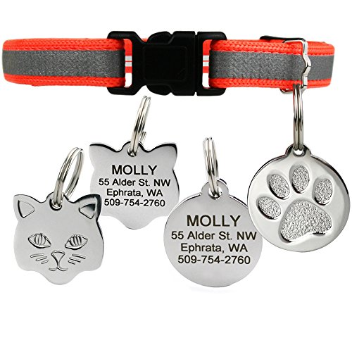 GoTags Reflective Cat Collar with Personalized ID Tag in Stainless Steel, Breakaway Cat Collar with Bell and Custom Engraved Cat Tag with up to 4 Lines of Custom Text, (Orange)