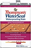 Thompsons Waterseal 42851 Semi-Trans Woodland Cedar WaterSeal® Waterproofing Stain