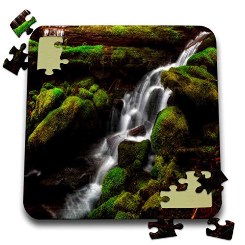 (3dRose Mike Swindle Photography - Landscapes - Creek Flowing Down Over Moss Covered Rocks - 10x10 Inch Puzzle (pzl_307822_2))