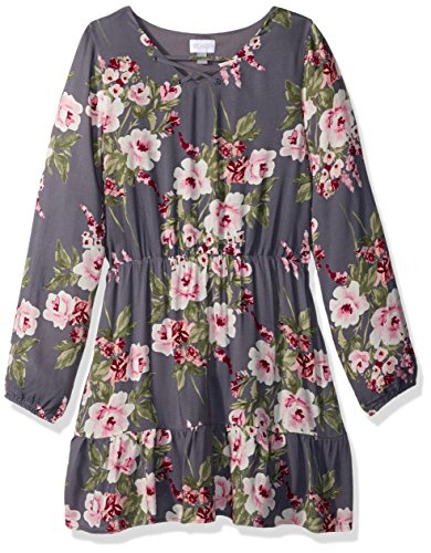 The Children's Place Big Girls' Long Sleeve Casual Dresses, Steamboat 85353, L (10/12)