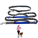 """COLLASARO Durable Hands Free Dog Leash for Running, Walking, Hiking, with Adjustable Waist Belt (Fits up to 47"""" Waist) and Shock Absorbing Bungee (CLA-Gray/Blue)"""