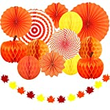 Adoreu Autumn Party Decoration Set Hanging Paper Fans Pumpkins Hanging Honeycomb and Felt Maple Leaves Garland Banner for Fall Party Halloween Day Birthday Wedding Photo Backdrop Fireplace Decoration