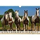 Gypsy Horses (Wandkalender 2020 DIN A4 quer): Schönheiten mit Puschelfüssen (Monatskalender, 14 Seiten ) (CALVENDO Tiere)