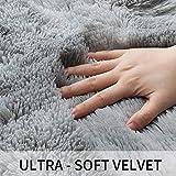 GKLUCKIN Shag Ultra Soft Area Rug, Non-Skid Fluffy