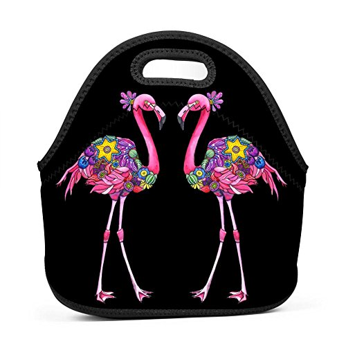 YRBZ Fancy Felicity Flamingo Waterproof Lunch Tote Bag Portable Picnic Lunch Box Food Container (Felicity One Handle Kitchen)