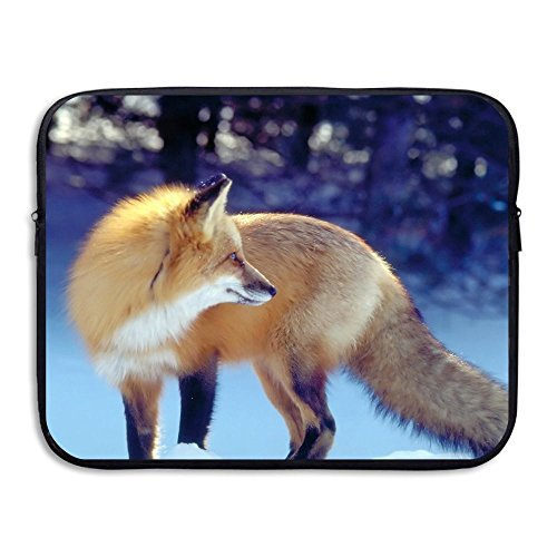 Snow Day Fox Water Repellent Laptop Case Bags Printed Ultrabook Briefcase Sleeve Bags Cover For Macbook Pro/Notebook/Acer/Asus/Lenovo Dell 13 - Chicago Water Mall