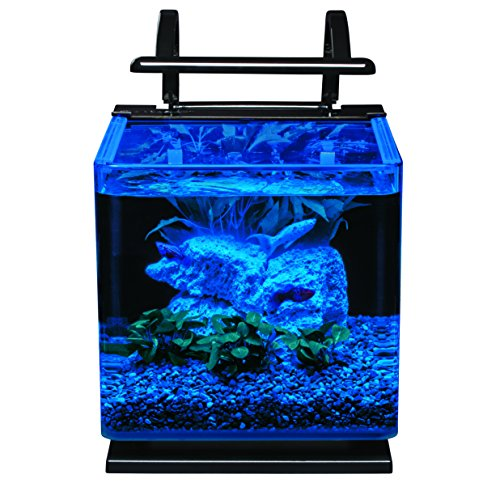 Marineland-Contour-Glass-Aquarium-Kit-with-Rail-Light-3-Gallon