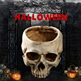 Prop Halloween Skeleton Animal Halloween Resin Skull Ashtray Container Box Skeleton Film Shooting Props Creative Flowerpot Halloween Home Decorations Nice Gift