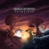 Paradigms (Vinyl)