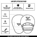 Jayefo Glorious Boxing Pads