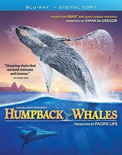 Blu-ray : Imax: Humpback Whales (Widescreen)