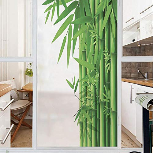 Decorative Window Film,No Glue Frosted Privacy Film,Stained Glass Door Film,Modern Illustration of Fresh Bamboo Stems Leaves with Colors Exotic Nature Home Decor Decorative,for Home & Office,23.6In. b