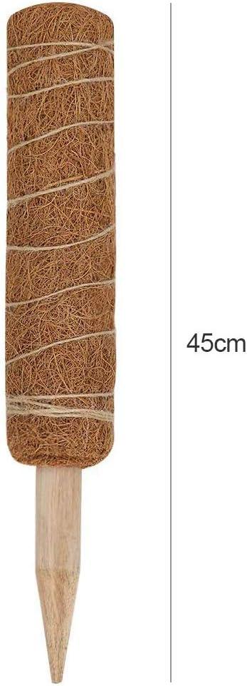 plantes d/'int/érieur grimpantes Bsopem B/âton totem en fibre de coco pour support de plantes 40 cm 1 pi/èce b/âton de mousse de coco extensible pour extension de support des plantes