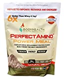 BodyHealth PerfectAmino Complete Power Meal Replacement Shake (Dark Chocolate 20 Servings), 100% Organic, Vegan Protein Powder Drink with MCT Oil, High Nutrition, Best for Weight Loss & Muscle Health