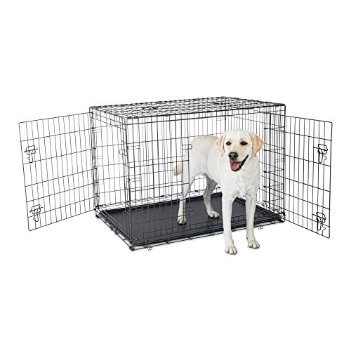 Petco Premium 2-Door Dog Crate, 42'L x 28'W x 30'H, X-Large, Black