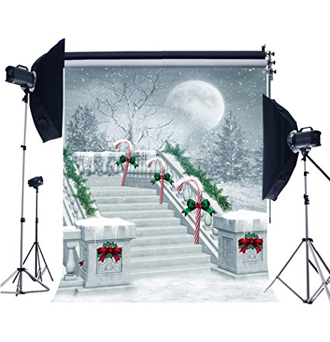 CXJ Photography Customized Background Christmas