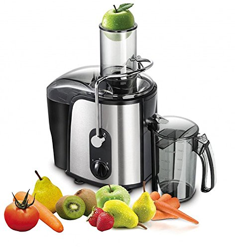 1000 Watt Edelstahl Saftpresse elektrischer Entsafter Power Juicer für ganze Früchte