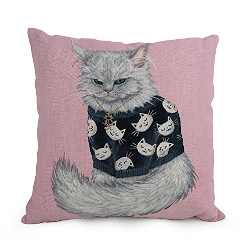 Loveloveu Cat Throw Pillow Covers ,best For Floor,teens Girls,couch,drawing Room,son,seat 18 X 18 Inches / 45 By 45 Cm(two Sides) (Cloth Dryer Rock compare prices)