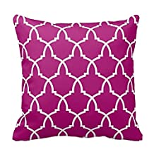 Deep Pink and White Trellis Design Decorative Pillow Case Covers Geometric Lattice Pattern for Sofa Two Sides 20x20 Inch