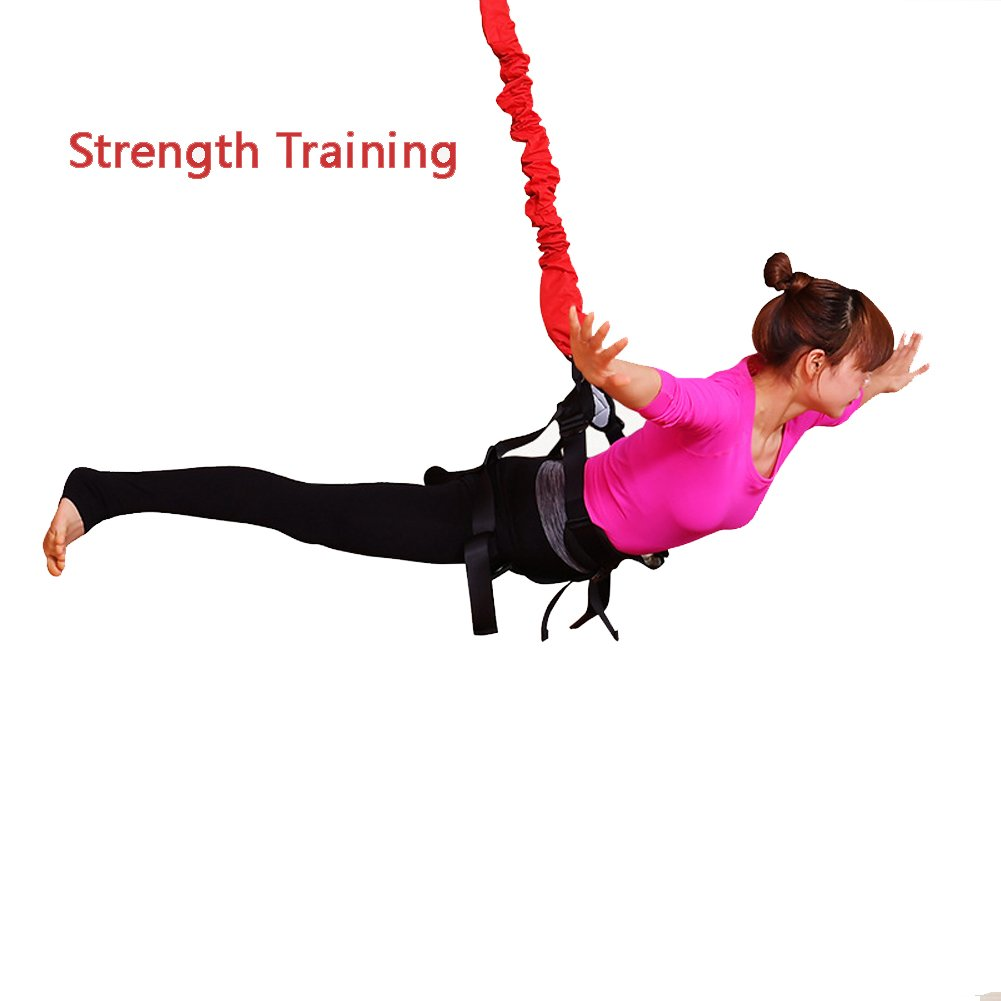 YNXing Bungee Workout Kit Trainer Heavy Bungee Cord Resistance Belt Bungee Workout Trainer with Comfortable Straps Improves Your Strength, Balance, Flexibility and Endurance