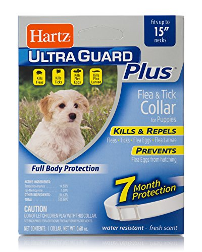 Hartz UltraGuard Plus Water Resistant 7 Month Protection Flea & Tick Collar for Dogs - 15in