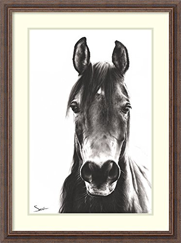 Framed Art Print 'Horse Portrait' by Eric Sweet