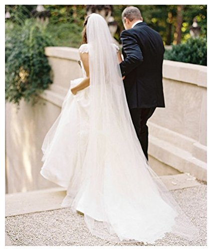 Belle House Light Ivory Tulle Sheer Wedding Bridal Veils Chapel for Bride (Tulle Veil)