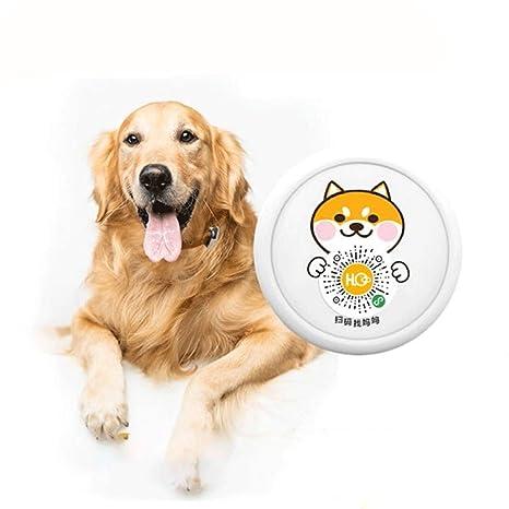 Rastreador GPS para mascotas, localizador de mascotas ...