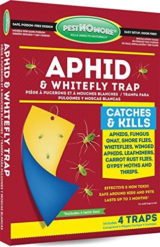 Pest No More GP441 Aphid Trap