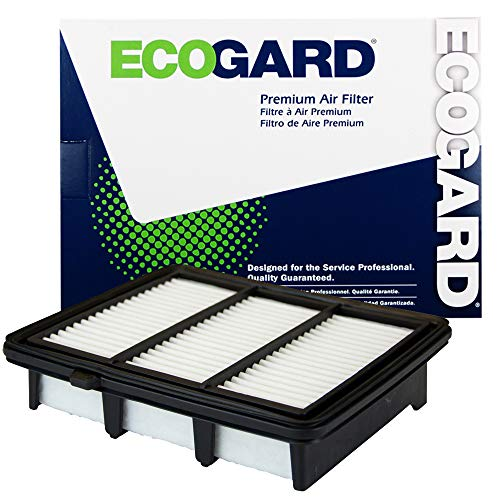 ECOGARD XA11569 Premium Engine Air Filter (Fits Honda Accord) (Honda Sport 2018)