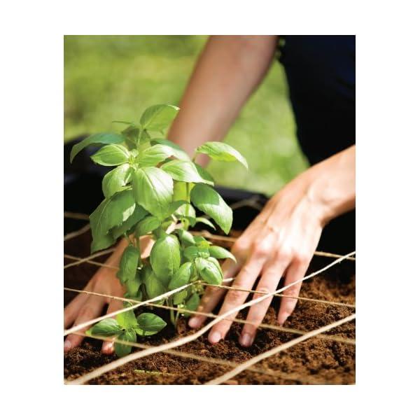 Curver Serra Raised Garden Bed Marrone 5 spesavip