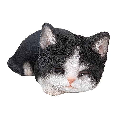 Realistic Bicolor Black and White Cat Kitten Sleeping Collectible Figurine Amazing Detailed Glass Eyes Hand Painted Resin Life Size 7 inch Figurine Perfect for Cat Lover - With Glasses Black And White Cat