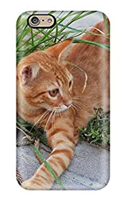 Durable Cat Wiht Rope Back Case/cover For Iphone 6