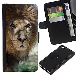 UberTech / Apple Iphone 6 4.7 / Africa Lion Beige Nature Savannah Animal King / Cuero PU Delgado caso Billetera cubierta Shell Armor Funda Case Cover Wallet Credit Card