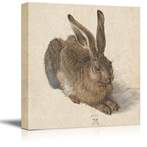 Hare 1502 by Albrecht Durer Print Famous Painting Reproduction