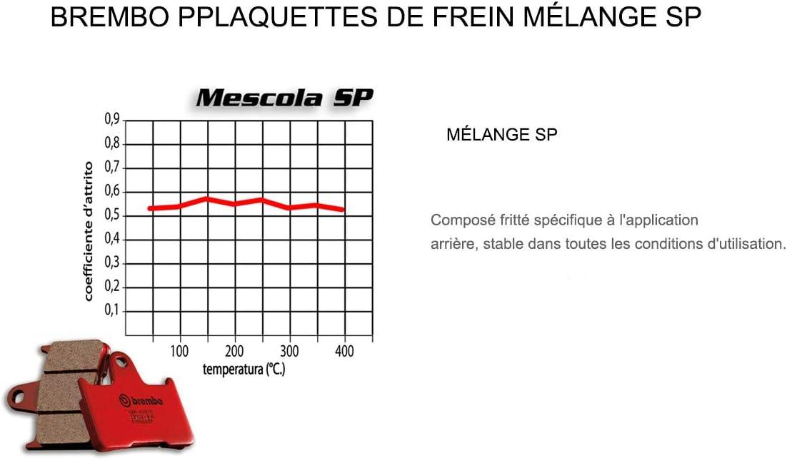 Pastiglie Brembo Freno Posteriori 07BB01.SP per RS REPLICA 125 1993 1997