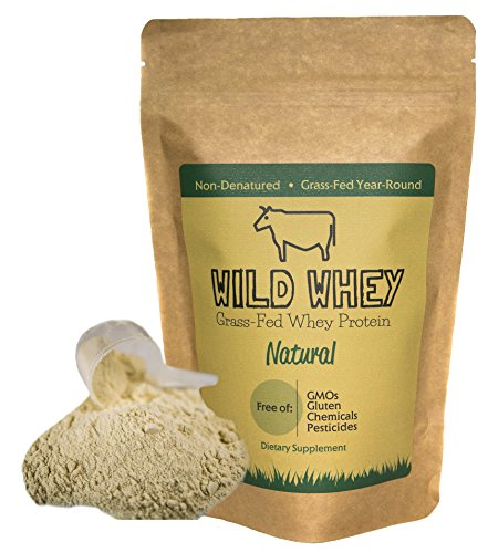 Grass-Fed Whey Protein, Low Carb Keto Friendly Cold Processed Non-Denatured, Biologically Active, GMO-Free Protein Concentrate Made Directly From Grass-Fed Milk (1.32 pound (600g) Natural/Unflavored)
