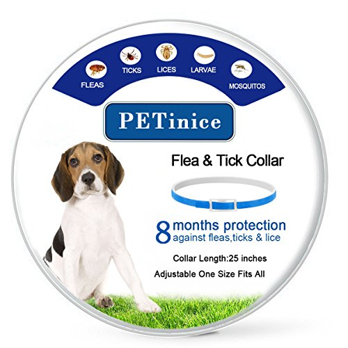 Flea and Tick Prevention for Dogs,Flea Collar for Dogs-Waterproof and Hypoallergenic Repels Pests Dog Collar,8 Month Protection,One Size Fits All(Adjustable)-Blue