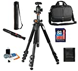 Vanguard 2GO 33 Bag + Vanguard Alta Pro 264AB 4-Section Aluminum Tripod with SBH-100 Ball Head + Vanguard Case, 64GB SDXC Card, Cleaning Kit, Lens Pen, Memory Card Wallet
