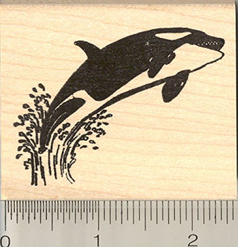 Killer Whale Rubber Stamp, Orca, Blackfish, Toothed