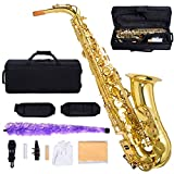 GHP Professional Gold Painted Eb/Alto Sax Saxophone w Case And Accessories